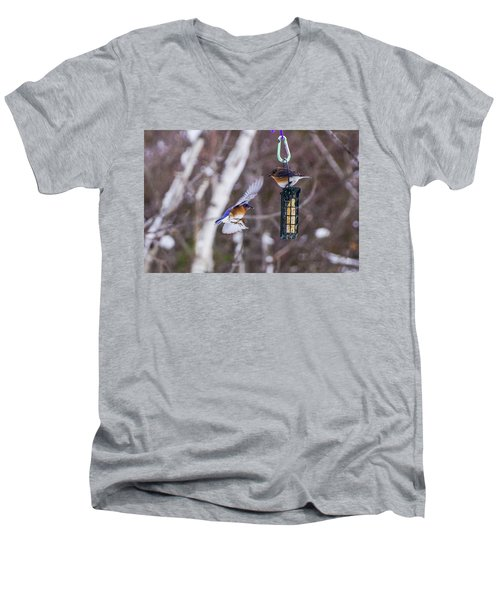 Docking Bluebird Men's V-Neck T-Shirt