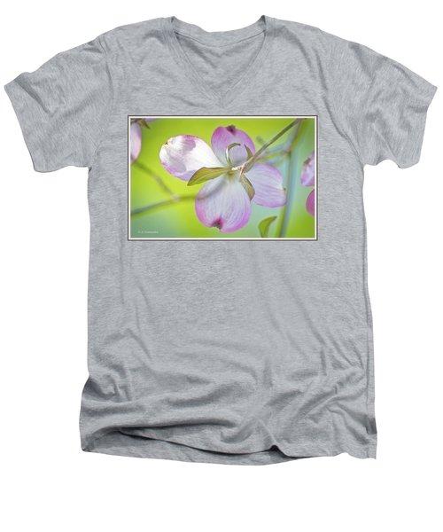 Dogwood Blossom In Spring Men's V-Neck T-Shirt
