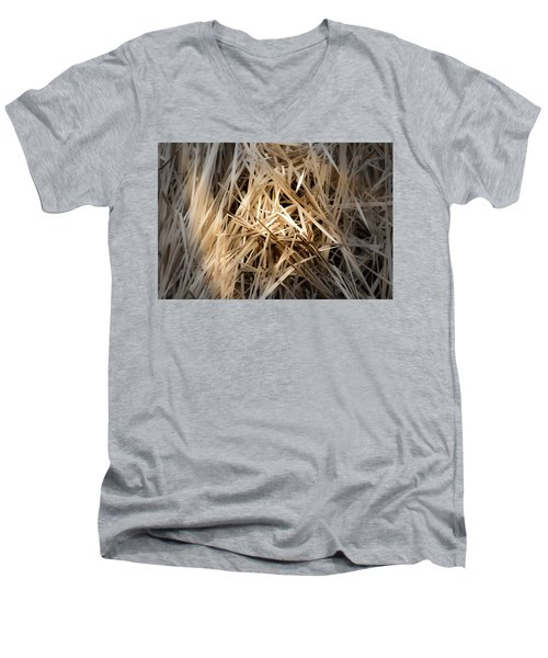 Dried Wild Grass I Men's V-Neck T-Shirt