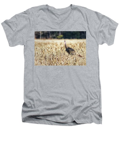 Eastern Wild Turkey Men's V-Neck T-Shirt