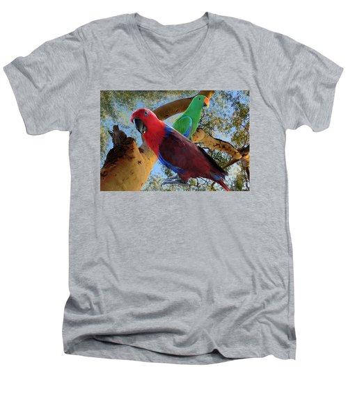 Eclectus Parrots Men's V-Neck T-Shirt