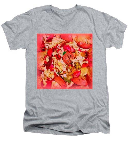 Elixir De L'amour  -  Potpourri Men's V-Neck T-Shirt