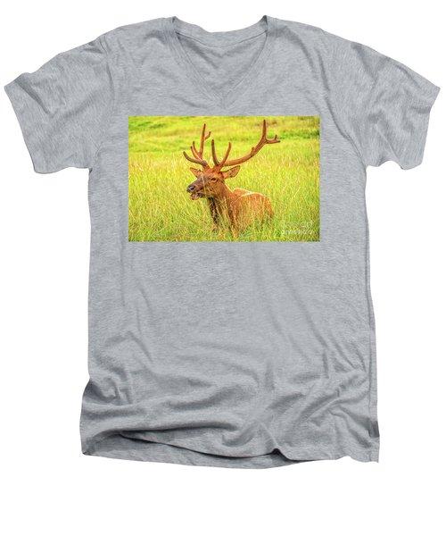 Elk Men's V-Neck T-Shirt