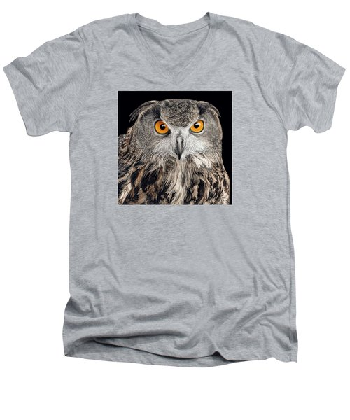 Eurasian Eagle Owl Men's V-Neck T-Shirt
