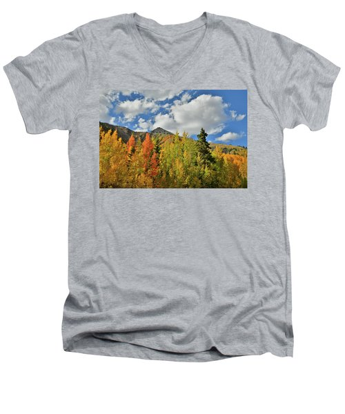 Fall Colored Aspens Bask In Sun At Red Mountain Pass Men's V-Neck T-Shirt