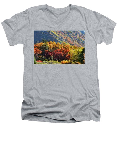 Fall Colors Along Avalanche Creek Road Men's V-Neck T-Shirt
