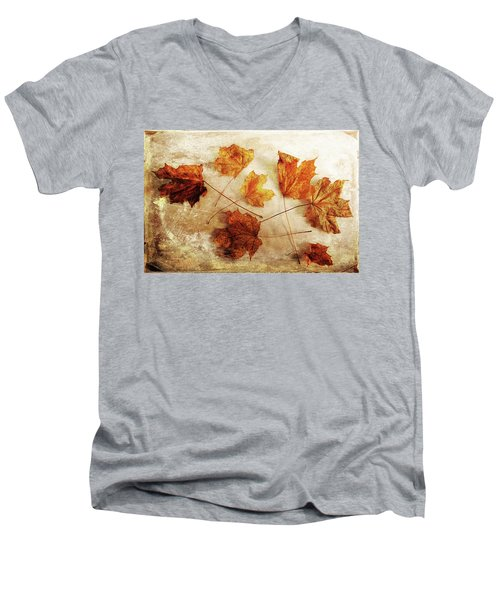 Men's V-Neck T-Shirt featuring the photograph Fall Keepers by Randi Grace Nilsberg