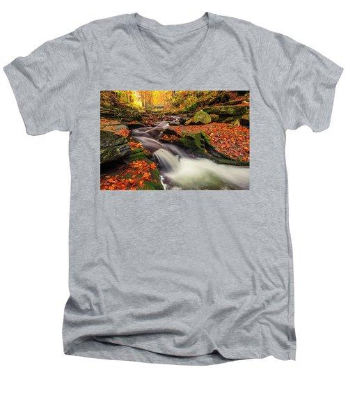 Fall Power Men's V-Neck T-Shirt