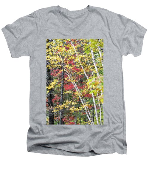 Men's V-Neck T-Shirt featuring the photograph Fall Red And Yellow Birch 10091501 by Rick Veldman
