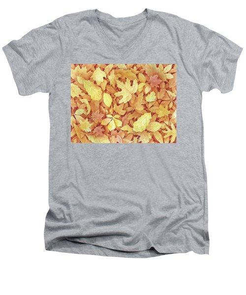 Fallen Leaves Men's V-Neck T-Shirt