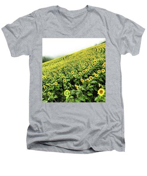 Fields Of Yellow Men's V-Neck T-Shirt