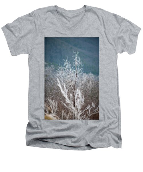 Fingers Of Hoarfrost Men's V-Neck T-Shirt
