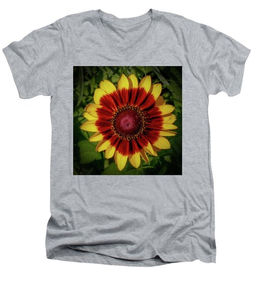 Firewheel Men's V-Neck T-Shirt