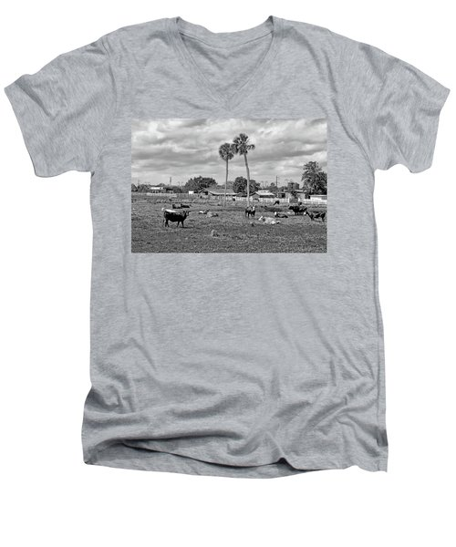 Florida Farmscape Men's V-Neck T-Shirt
