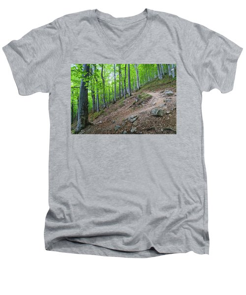 Forest On Balkan Mountain, Bulgaria Men's V-Neck T-Shirt