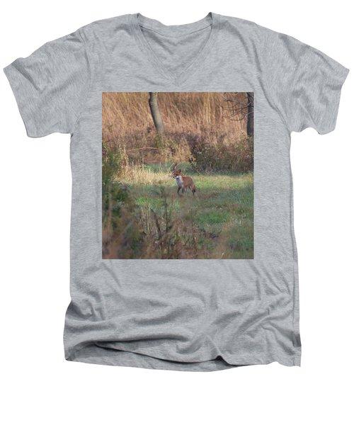 Fox On Prowl Men's V-Neck T-Shirt