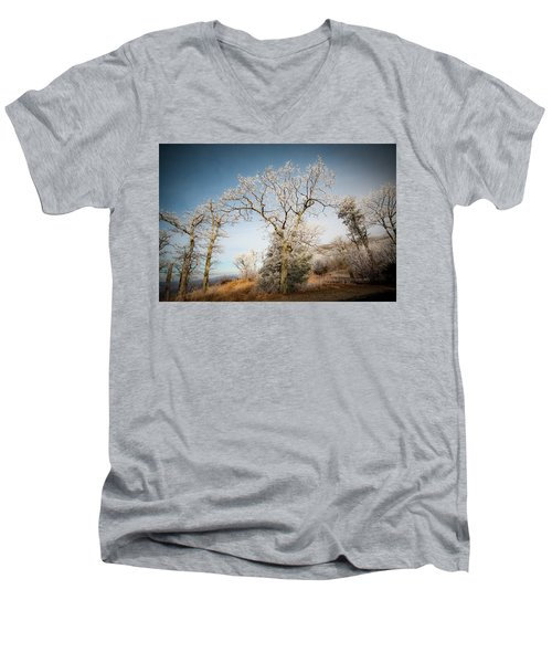 Frost On The Mountain Men's V-Neck T-Shirt