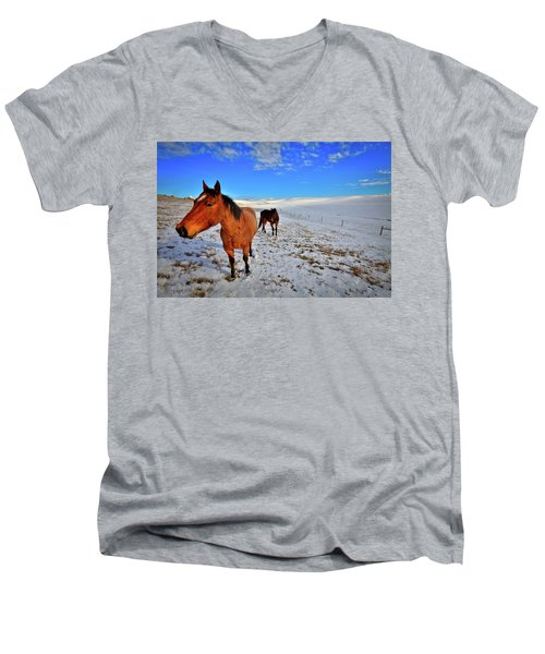 Men's V-Neck T-Shirt featuring the photograph Geldings In The Snow by David Patterson