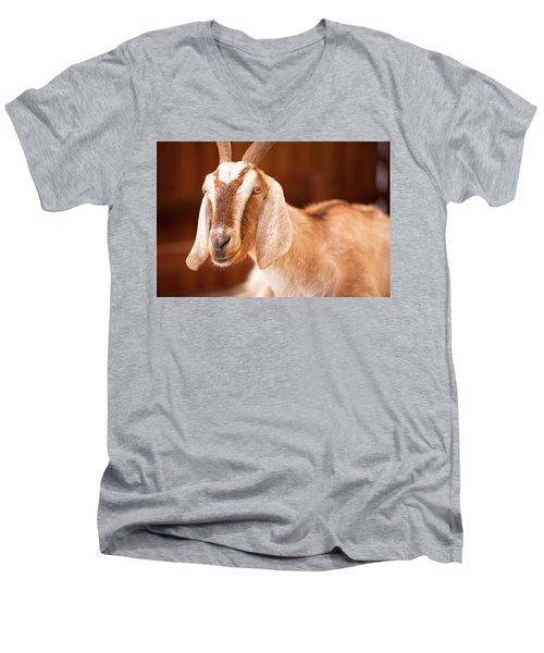 Goat Men's V-Neck T-Shirt