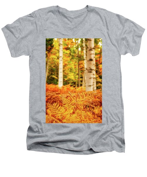 Golden Ferns In The Birch Glade Men's V-Neck T-Shirt