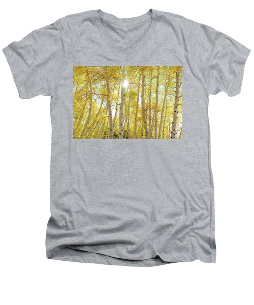 Men's V-Neck T-Shirt featuring the photograph Golden Sunshine On An Autumn Day by James BO Insogna