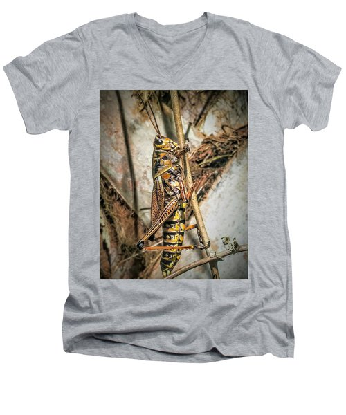 Grasshopper Men's V-Neck T-Shirt