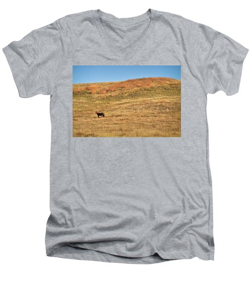 Grazing In The Grass Men's V-Neck T-Shirt