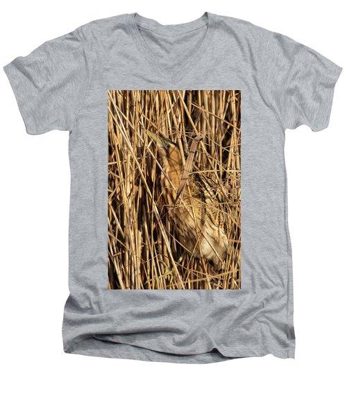 Great Bittern Men's V-Neck T-Shirt