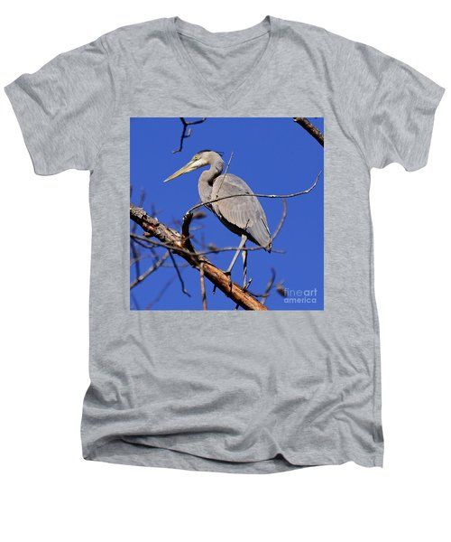 Great Blue Heron Strikes A Pose Men's V-Neck T-Shirt