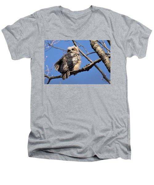 Great Horned Owlet 42915 Men's V-Neck T-Shirt