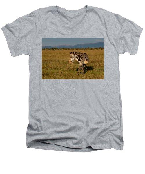 Grevy's Zebra Men's V-Neck T-Shirt
