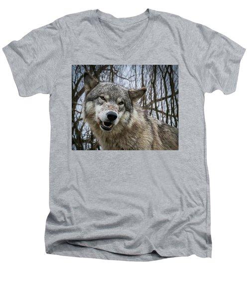 Grrrrrrrr Men's V-Neck T-Shirt