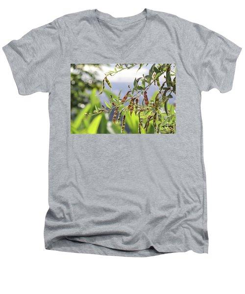Gungo Peas Men's V-Neck T-Shirt