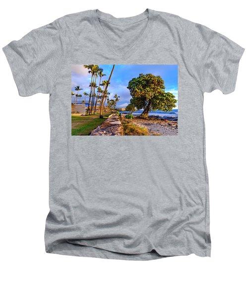 Hale Halawai Park Men's V-Neck T-Shirt