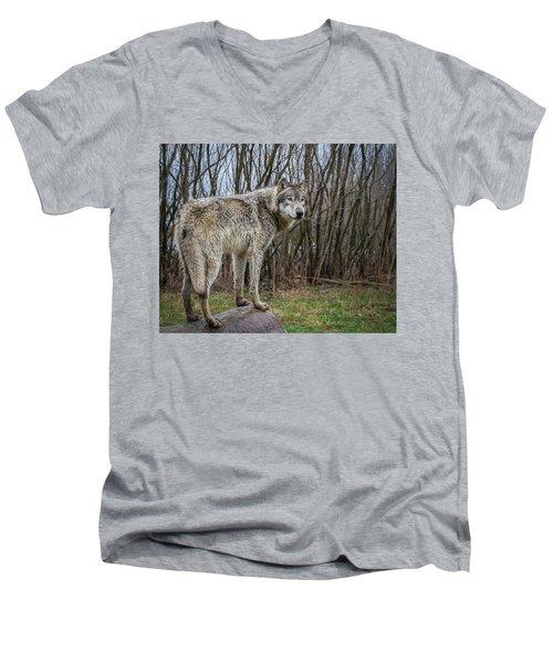 Hangin' Out Men's V-Neck T-Shirt