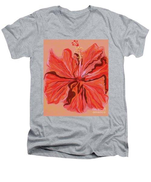 Hibiscus Color Lines Men's V-Neck T-Shirt