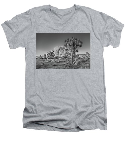 Hidden Valley Rock Men's V-Neck T-Shirt