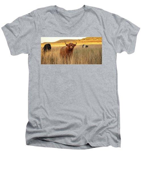 Highland Cows On The Farm Men's V-Neck T-Shirt