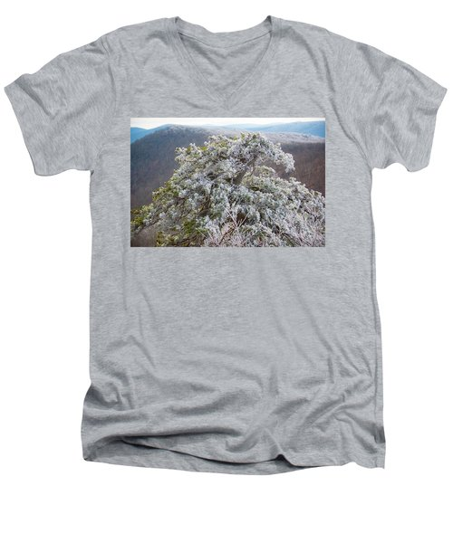 Hoarfrost On Trees Men's V-Neck T-Shirt