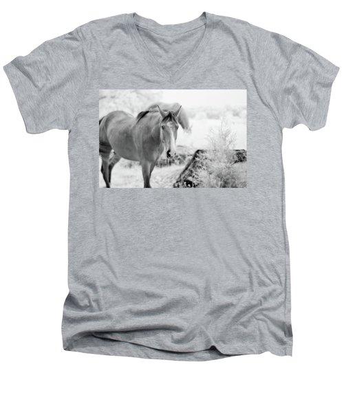 Horse In Infrared Men's V-Neck T-Shirt