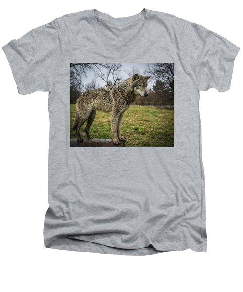 I See It Men's V-Neck T-Shirt