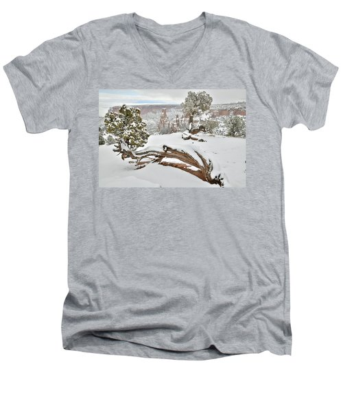 Independence Canyon Of Colorado National Monument Men's V-Neck T-Shirt
