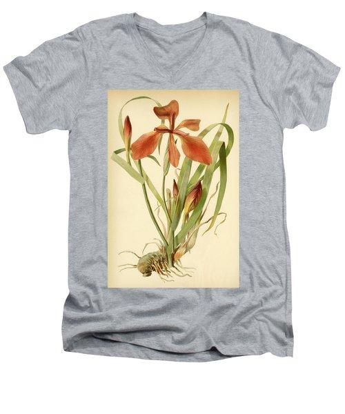 Iris Cuprea Copper Iris.  Men's V-Neck T-Shirt