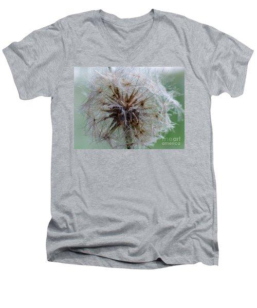 Irish Daisy Men's V-Neck T-Shirt