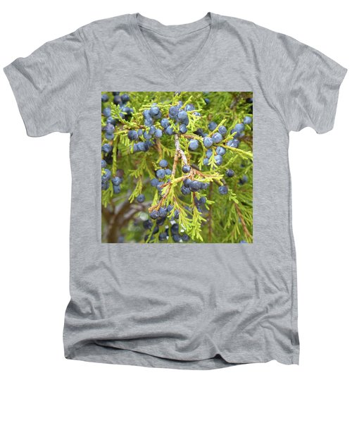 Juniper Berries Men's V-Neck T-Shirt