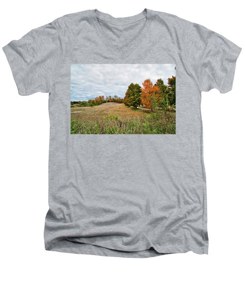 Landscape In The Fall Men's V-Neck T-Shirt