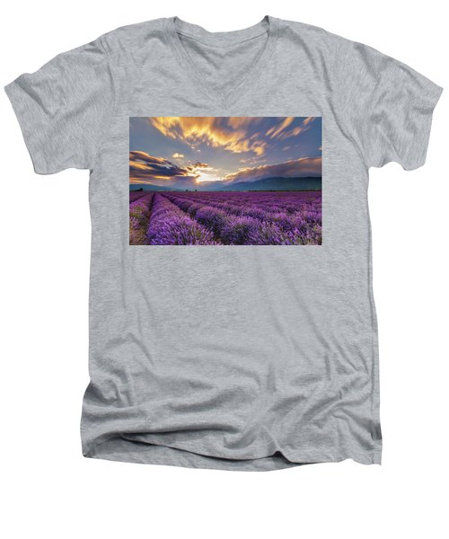 Lavender Sun Men's V-Neck T-Shirt