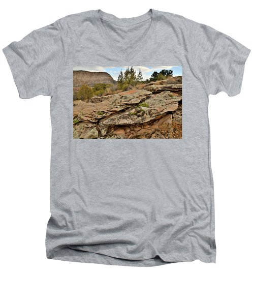 Lichen Covered Ledge In Colorado National Monument Men's V-Neck T-Shirt