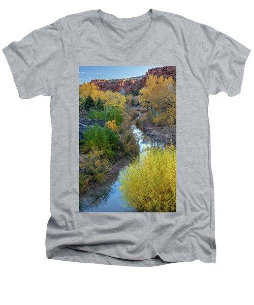 Little Dominguez Men's V-Neck T-Shirt