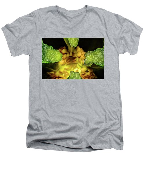 Looking Into A Pepper Men's V-Neck T-Shirt